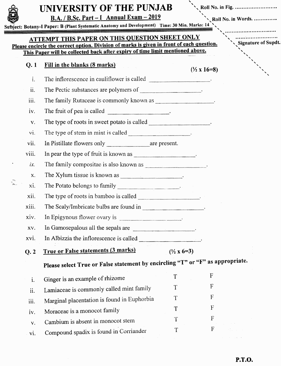Botany Plant Systematic Anatomy Objective Group 2 BA Part 1 Past Papers 2019