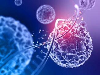 12th Biology MCQS Image By FG STUDY